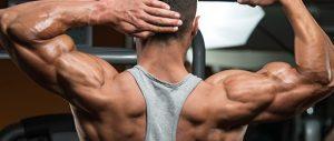Come usare gli steroidi con attenzione per il bodybuilding